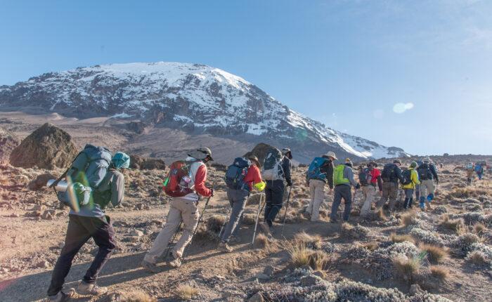 Kilimanjaro climbing - Lemosho Route 6 days Itinerary